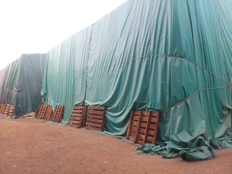 33000 tonnes de sucre sont stockées au sein de l'usine en attente de preneurs.