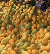 production-de-mangues-au-burkina-600x330